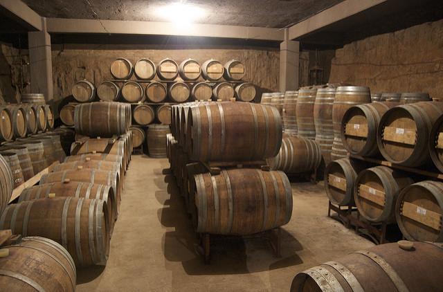 viniculture-basse-californie