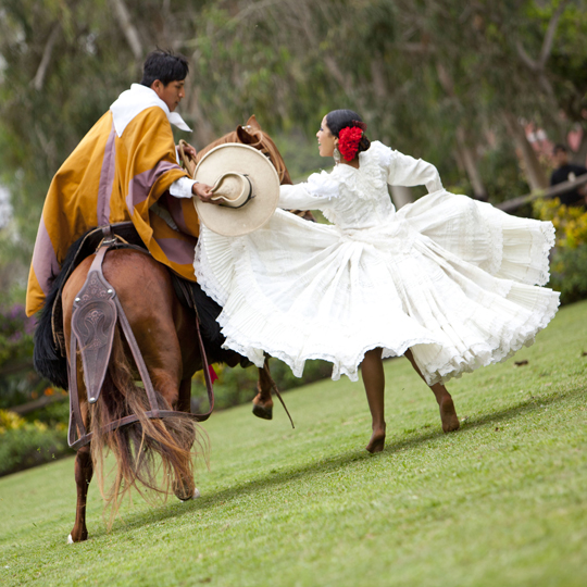 Horse paso tradition peru
