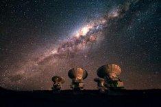 alma-jfs-2010-10-65608