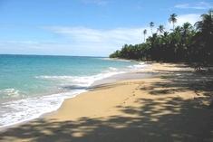 beach punta uva costa rica