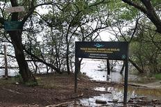 Las Baulas National Park Costa Rica