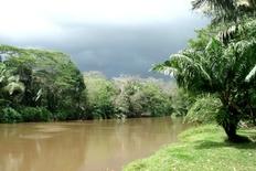 Cano Negro Ecologic Reserve Costa Rica