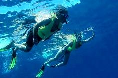 snorkeling-caribean-costa-rica
