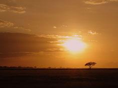 south-afrique-437b2