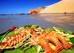 Fresh Lobsters on a Beach in Nordeste
