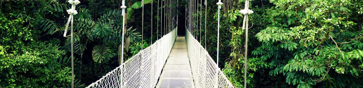 hanging-bridge-costa-rica