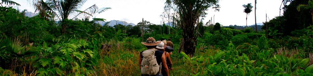 grands-parcs-amazoniens-2