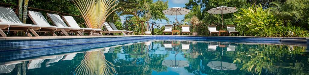 mangabeiras-piscine