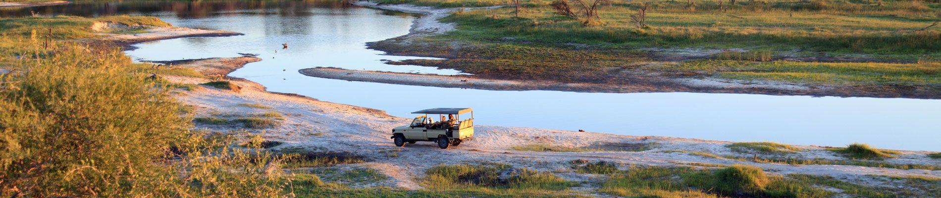 afrique-botswana-safari-st