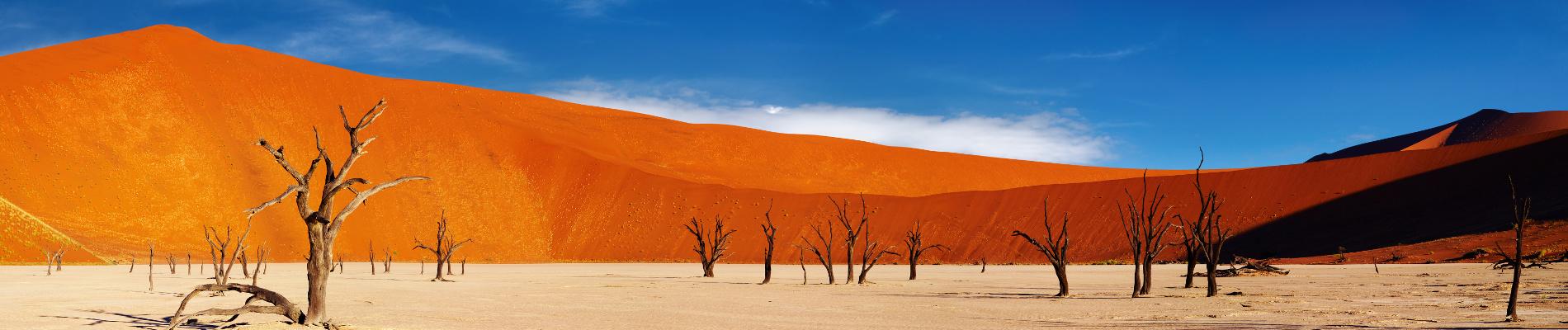 afrique-namibie-desert-st