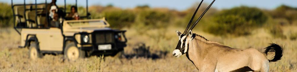 Kalahari-safari-botswana