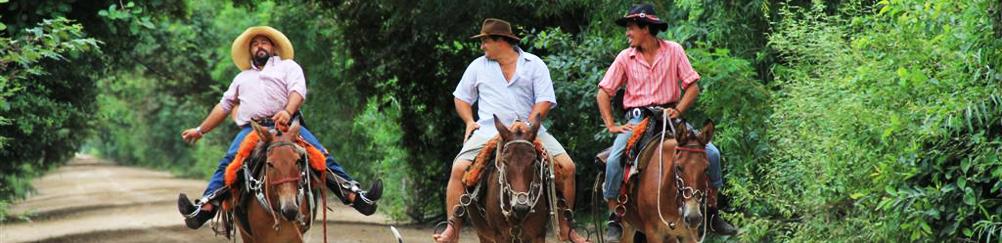 Farmers, Pantanal