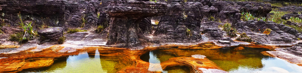 Natural Pool, Mount Roraima