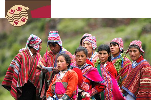 Terra Andina Perú