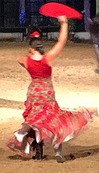 dancer -show- equestrian