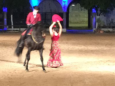 horse-festival-jerez