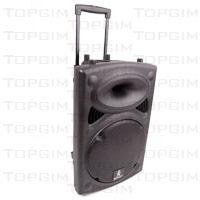 """Sistema de som portátil Ibiza 12"""" com bateria interna e microfone sem fios"""