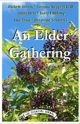 New - An Elder Gathering