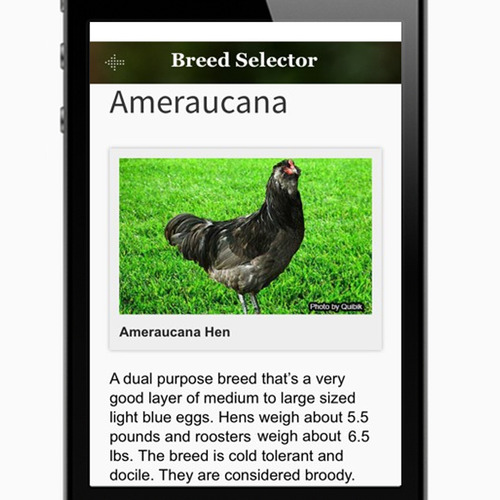 Cluck-ulator Breed Page