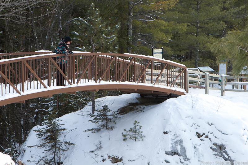 raquette ski de fond et sentiers de marche en hiver le. Black Bedroom Furniture Sets. Home Design Ideas