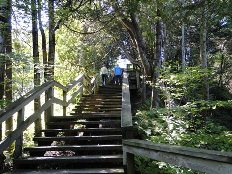 escalier-forges-du-saint-maurice