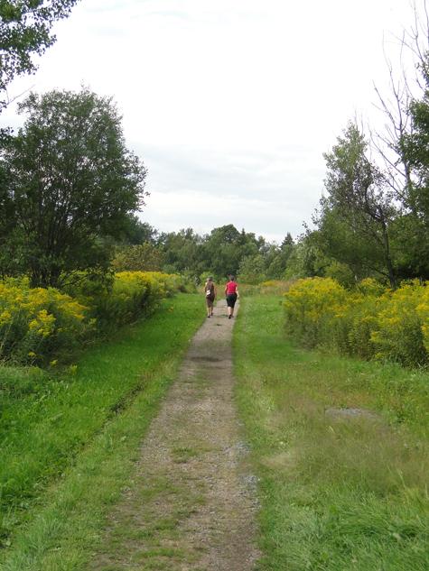 sentier-nature-forges-du-saint-maurice-trois-rivieres