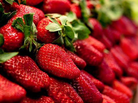 fraises-boissons-du-roy-ste-anne-de-la-perade