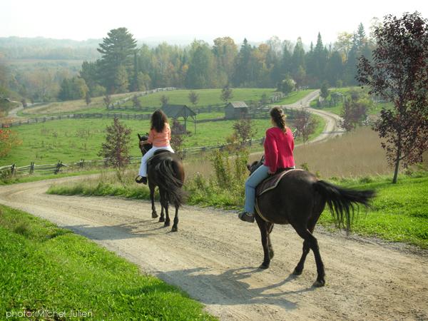Equitation Auberge le Baluchon