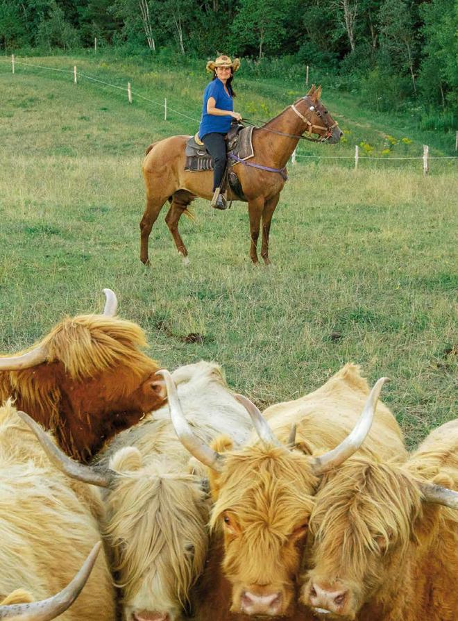 baluchon-cheval-cowboy