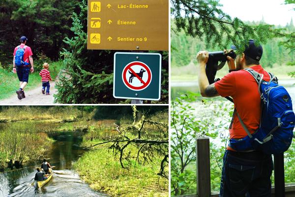 Le sentier du Lac-Étienne offre des points de vue sur des milieux humides