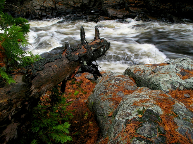 riviere-du-loup-ronald-milot