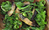 Spicy_mushrooms___kale_thumb