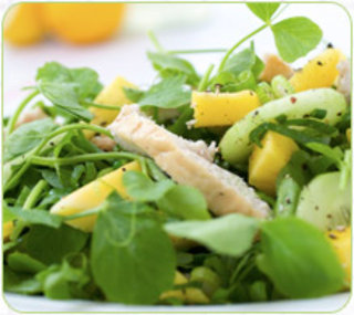 Rhs-mango-and-smoked-chicken-salad_medium