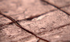 Nl0208_chocolate_pistachio_fudge_lg_thumb