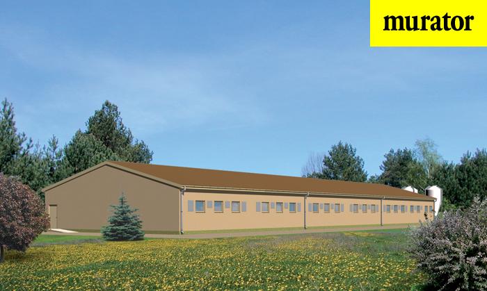 Projekt domu Tuczarnia na 600 sztuk, na rusztach - T12 1