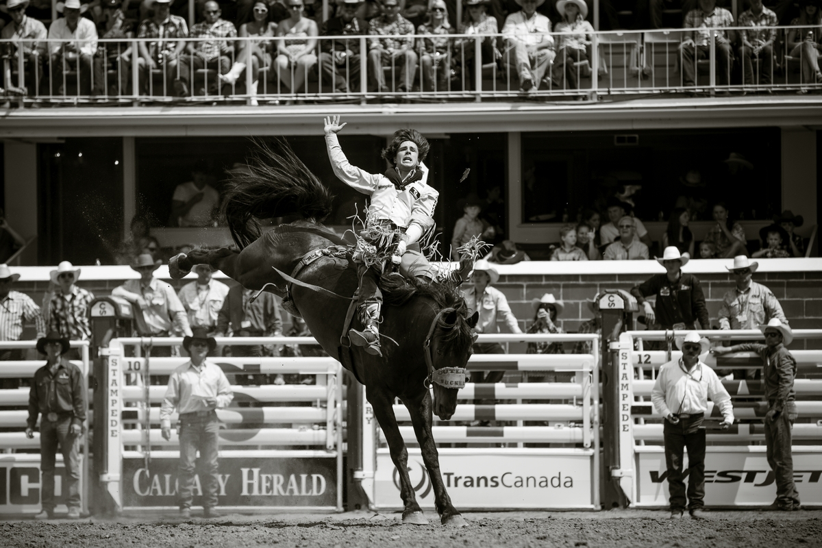 2014 Calgary Stampede Round 2