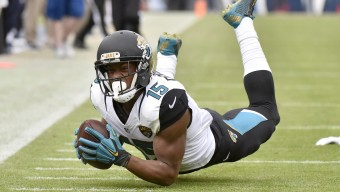 NASHVILLE, TN - DECEMBER 6:  Allen Robinson #15 of the Jacksonville Jaguars makes a catch against Tennessee Titans during the game at Nissan Stadium on December 6, 2015 in Nashville, Tennessee. (Photo by Frederick Breedon/Getty Images)