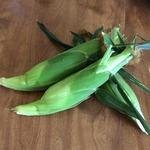 Corn_%28whole_ear%29