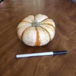 Mini_tiger_striped_pumpkin