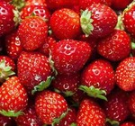 Starwberries_