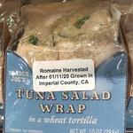 Tuna_salad_wrap