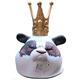 Panda_king_head-trampt-3553t