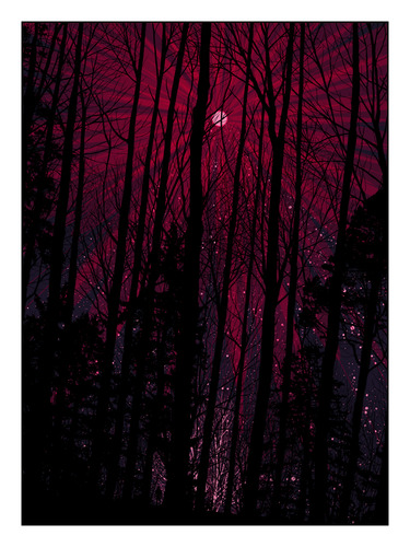 Pink_moon-dan_mccarthy-screenprint-trampt-11822m