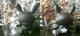 Plugin_hollywood_1-tristan_eaton-dunny-kidrobot-trampt-25386t