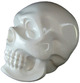 Shingon Skull - White