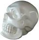 Shingon_skull_-_white-usugrow-shingon_skull-secret_base-trampt-29396t