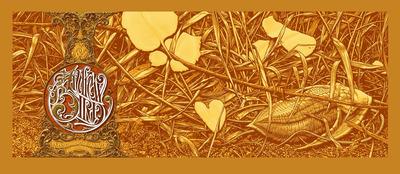 Andrew_bird_orange-aaron_horkey-screenprint-trampt-42604m
