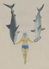 The Shark Charmer