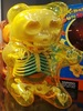 Gummi Bear Anatomy Puzzle Toy - Yellow