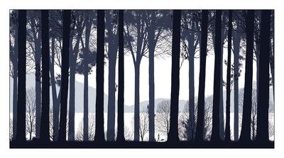 The_past_walked_beside_us-dan_mccarthy-screenprint-trampt-70081m